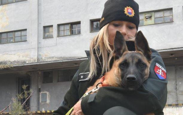 cde3ef0ec01d Ministerstvo vnútra Slovenskej republiky